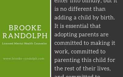 Consumer Mentality v. Commitment Mentality in Adoption